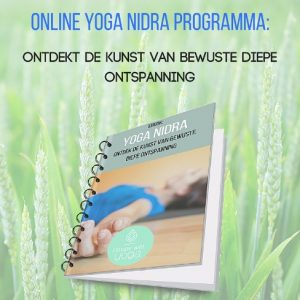 Mindfulness in Utrecht